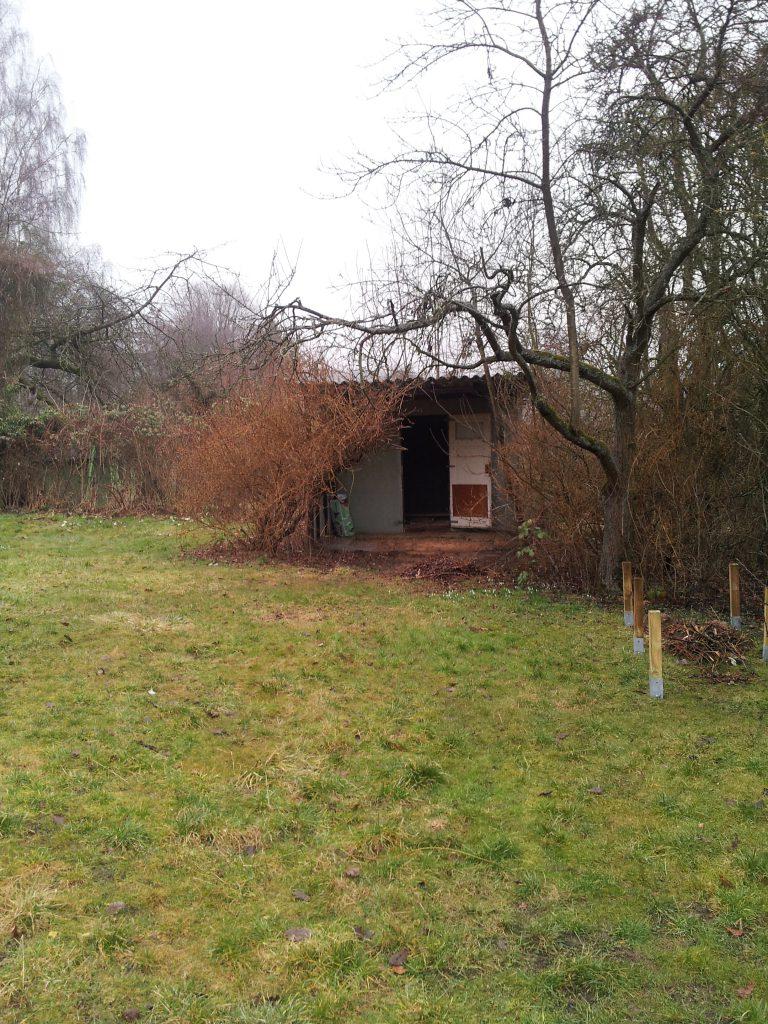 Der Pachtgarten mit alter Gartenhütte vor Sanierung