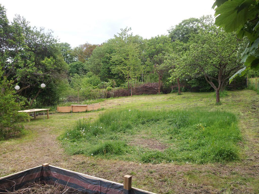 Die Gestaltung des Pachtgartens hat begonnen