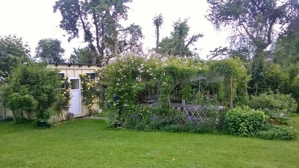 Das Gartenhaus im Pachtgarten mit rosenberankter Laube
