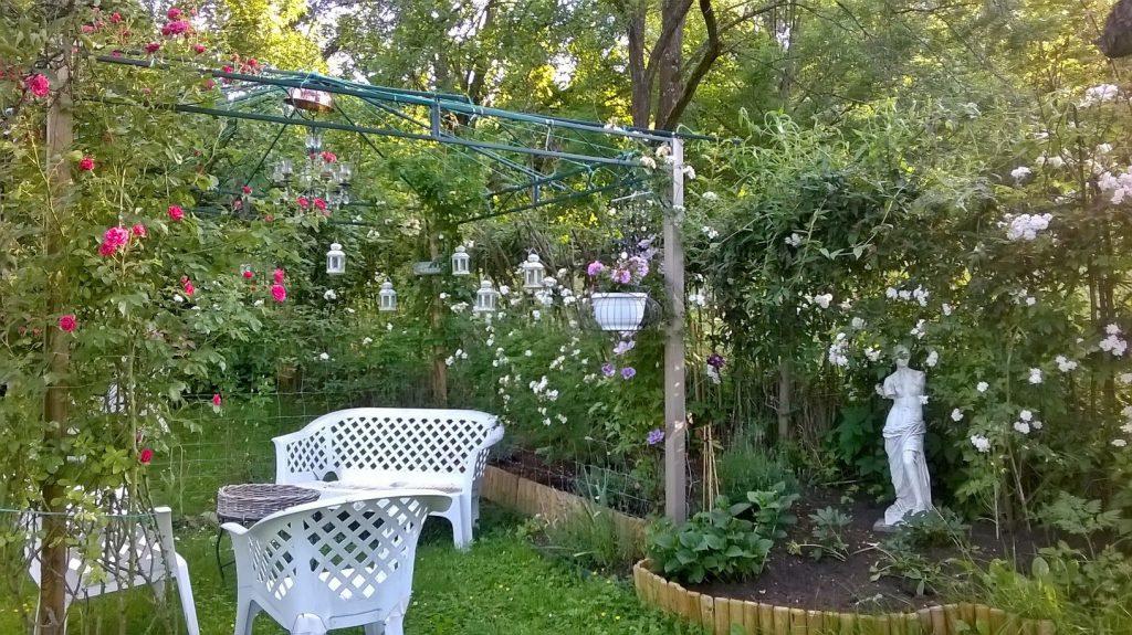 Der romantische Sitzplatz im Pachtgarten, berankt von Rosen
