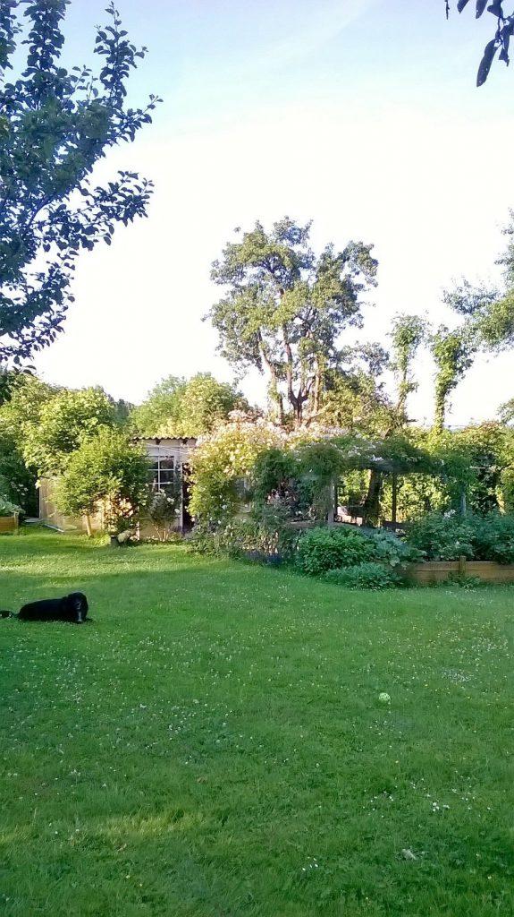 Der Pachtgarten nach seiner Gestaltung