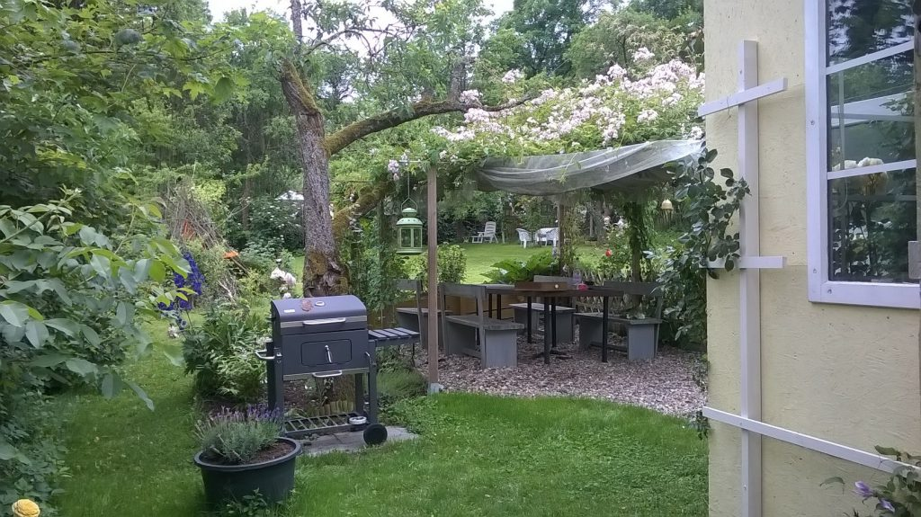 Die Laube vor dem Gartenhaus im Pachtgarten