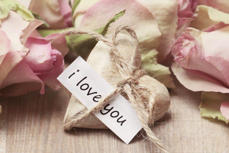 Rosen und Liebe gehören untrennbar zusammen