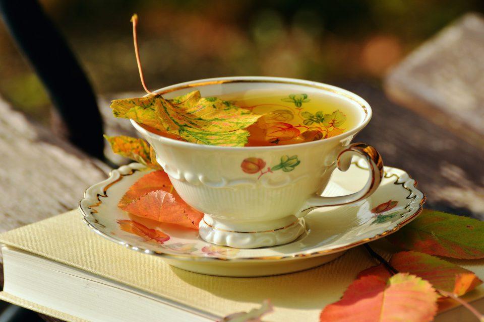 Tee und Buch im Garten
