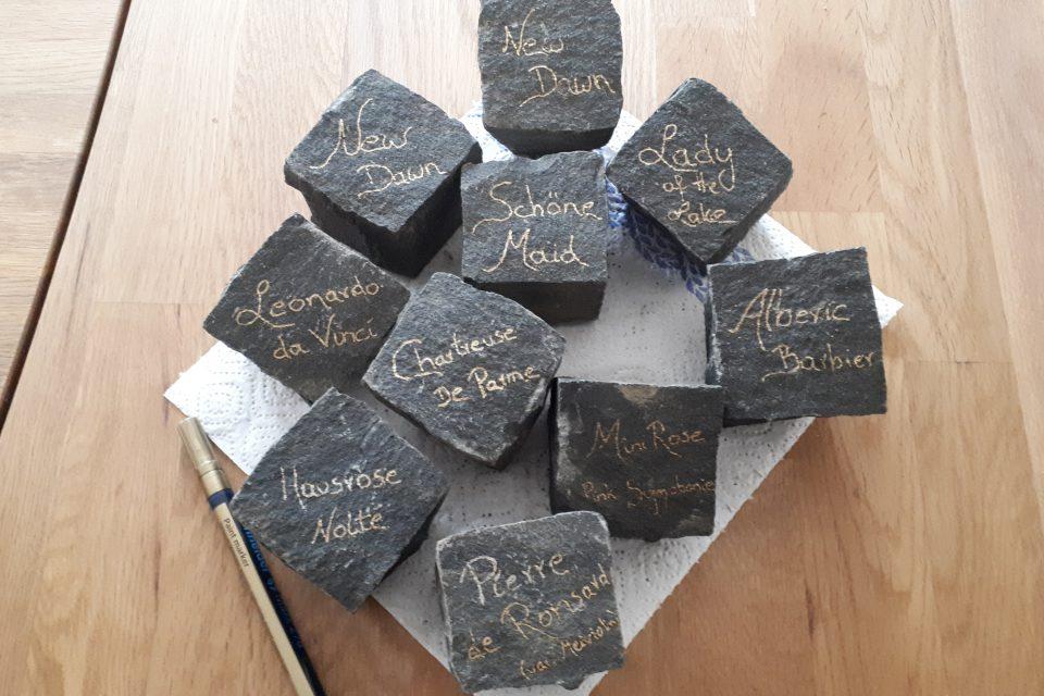 Hübsche Sortenbeschriftung im Garten auf Basaltsteinen, mit Lackstift beschriftet