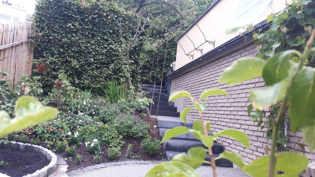 Das kleine Staudenbeet Hang an der alten Kirsche, wenige Wochen nach der Bepflanzung.