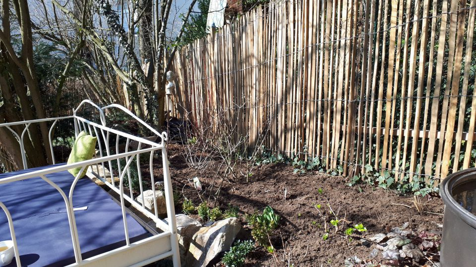 Die Bepflanzung hinter dem Gartenbett im Frühjahr 2019