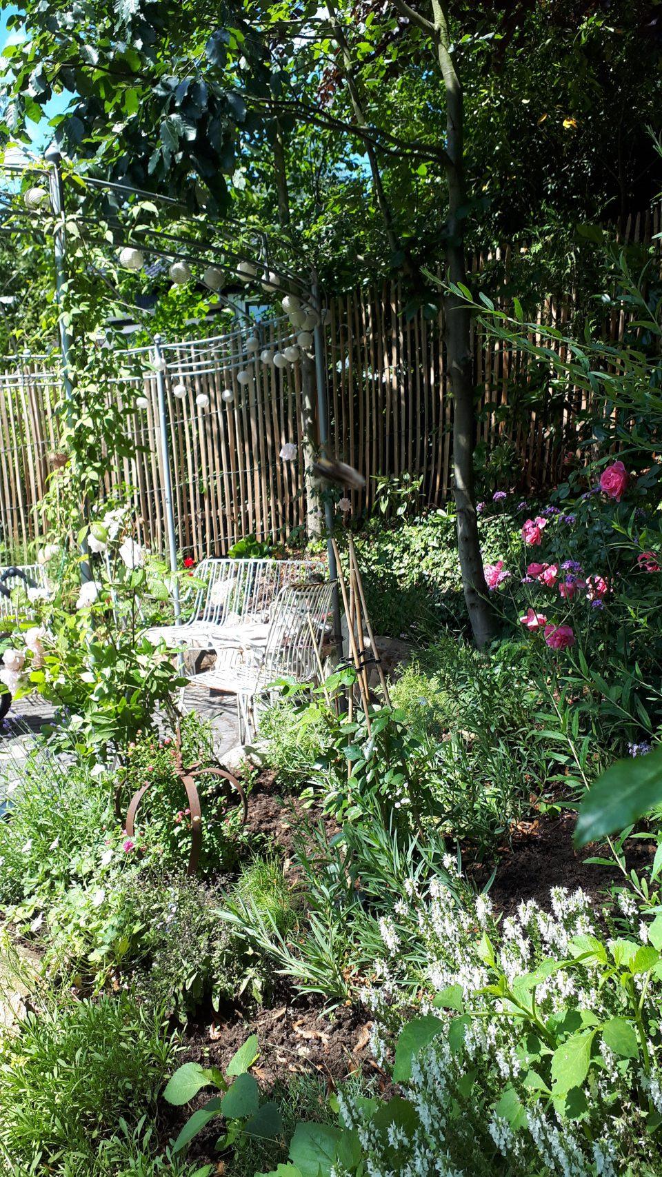 Der Rosenpavillon mit benachbartem Staudenbeet im Frühsommer 2019