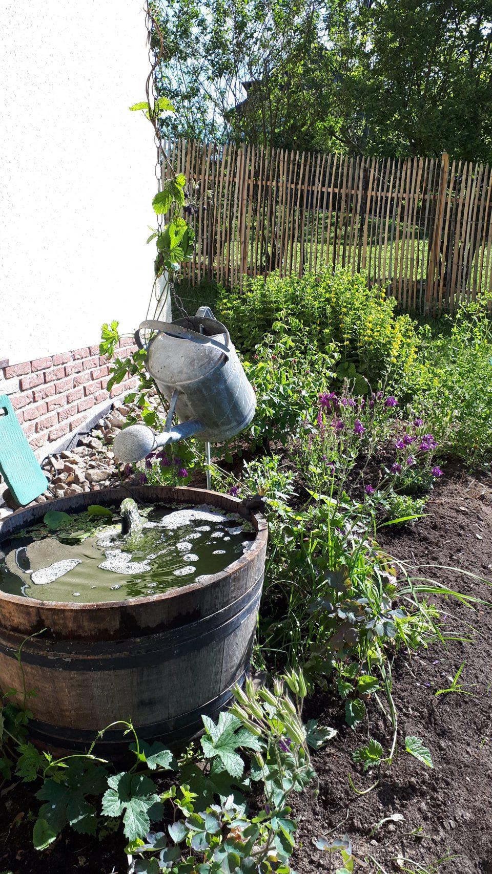 Das halbierte Weinfass hatte zunächst eine Gießkanne mit Regenkette als Teil des romantischen Wasserspiels. Später wurde die Gießkanne durch die alte Wasserpumpe ersetzt.