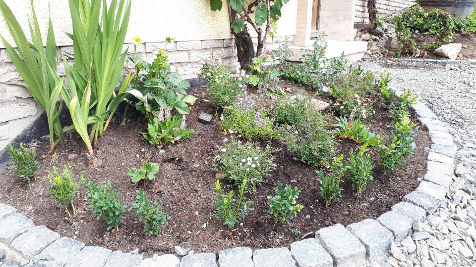 Das frisch gepflanzte Beet neben der Haustür