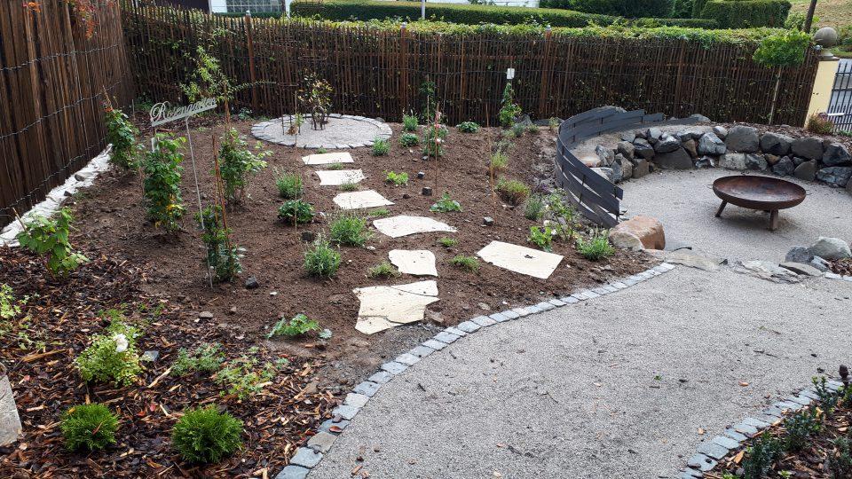 Der Rosengarten wurde nach und nach bepflanzt. Zuerst die Rosen, dann die Begleiter.
