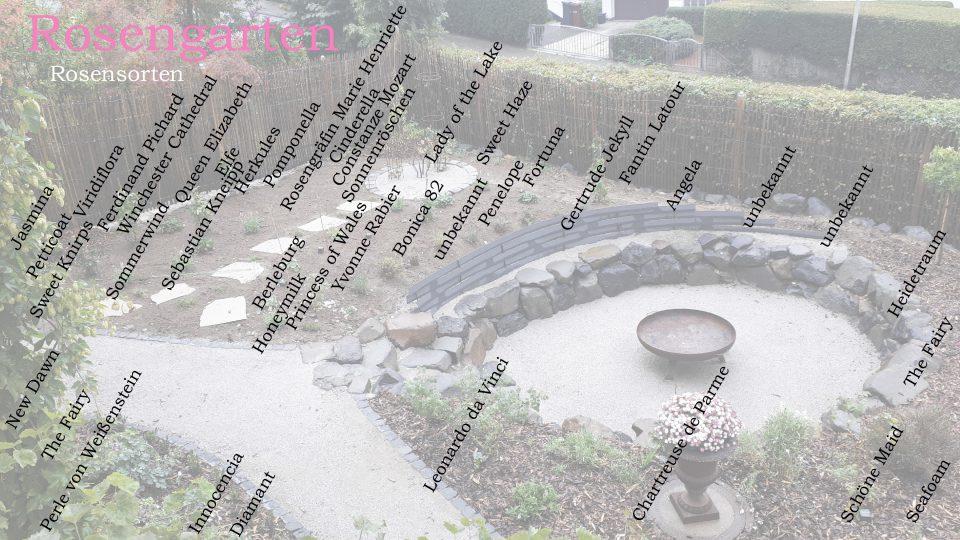 Der Rosengarten mit Pflanzplan meiner Rosensorten