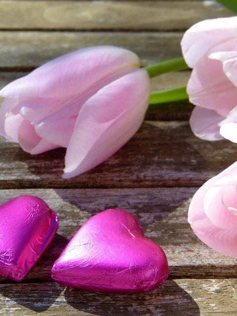 Im Frühling die Liebe finden, Frühlingserwachen