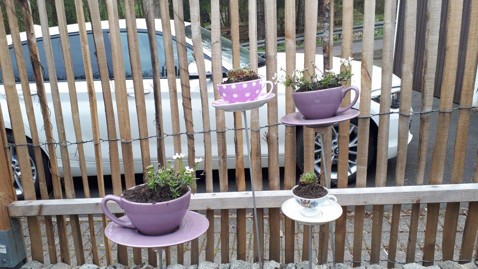 Ausgediente Tassen wurden auf Stäbe gesteckt und bepflanzt