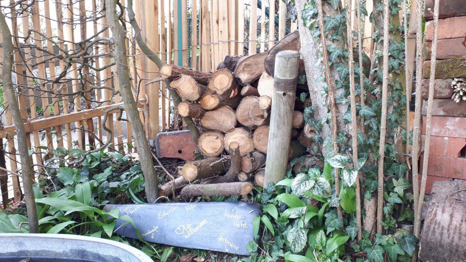 Neben dem Insektenhotel wurde ein Holzstapel platziert der auch anderen Nützlingen Unterschlupf bietet.
