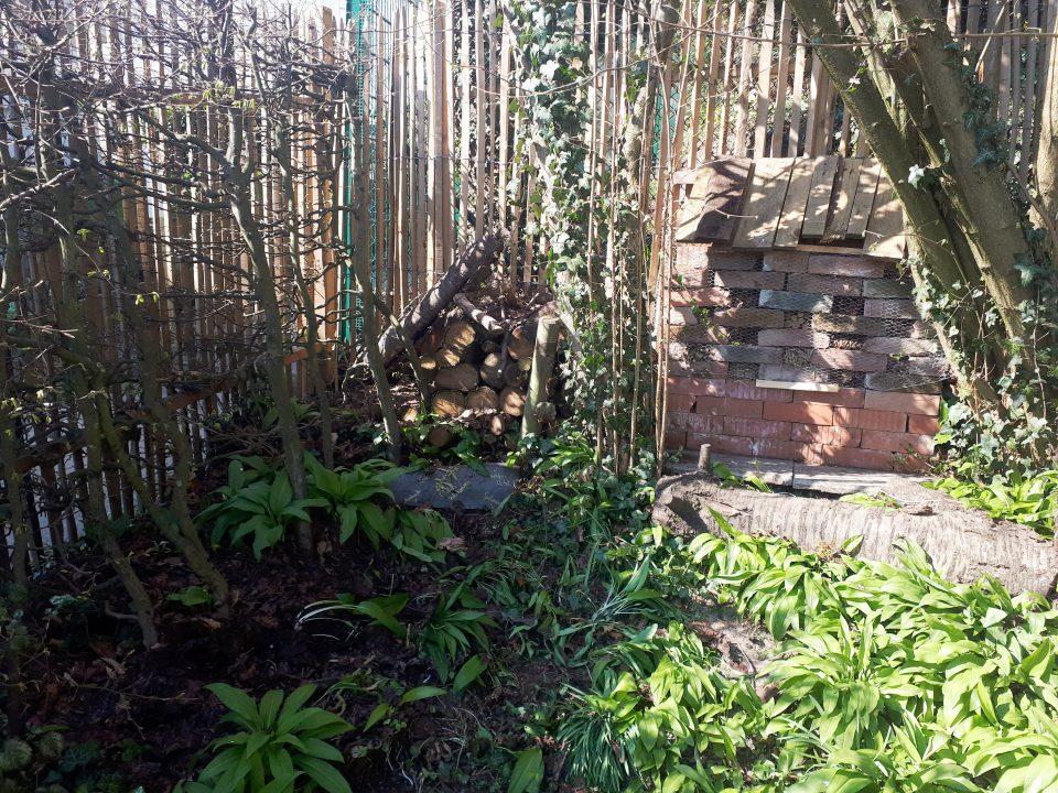 Der Holzstapel neben dem Insektenhotel bietet weiteren Unterschlupf.