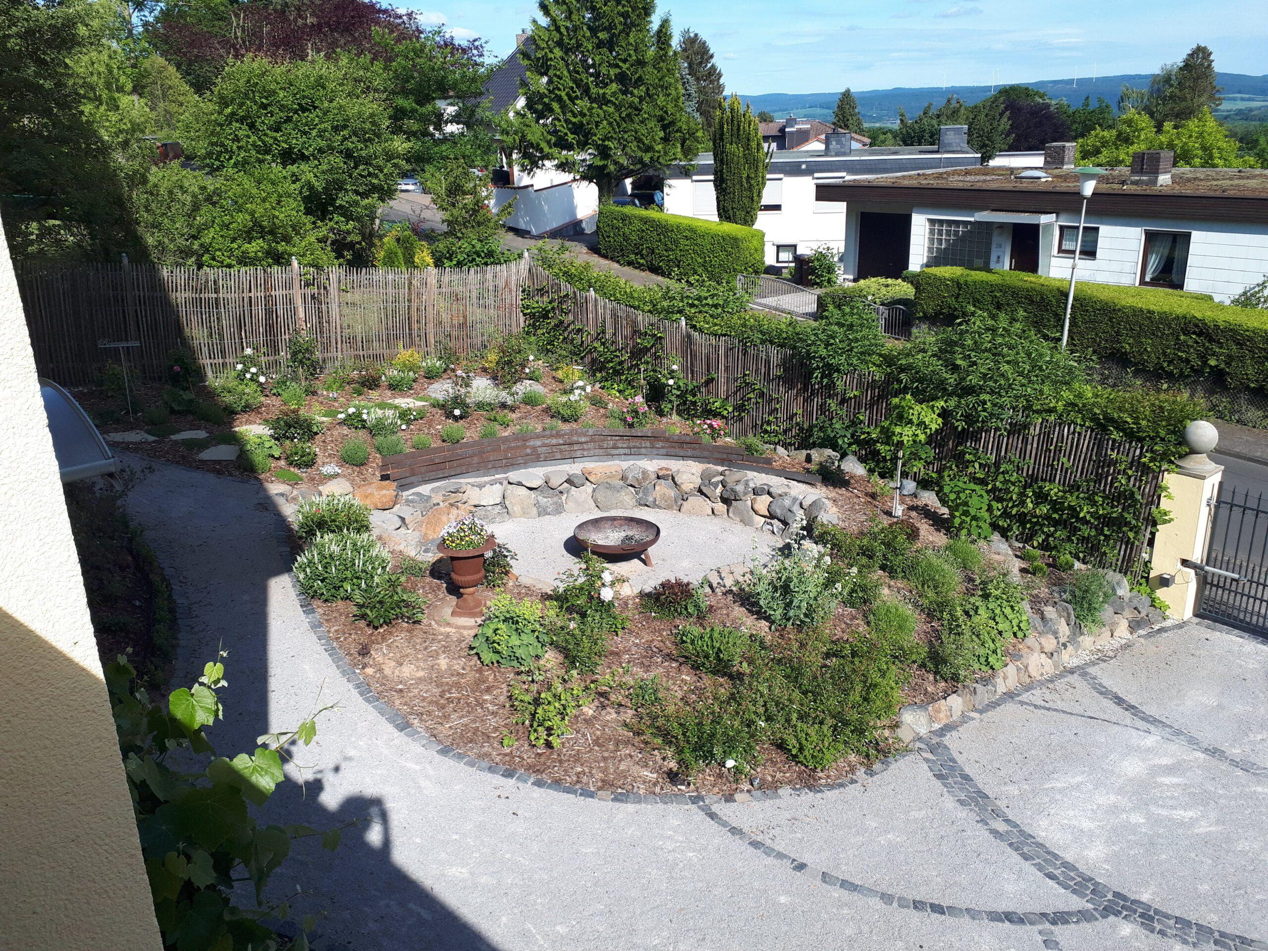 Meine Rosensorten sind primär im Rosengarten rund um den Senkgarten gepflanzt. Aber auch im übrigen Garten sind natürlich an einigen Stellen Rosen zu finden.