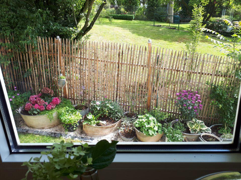 Der Blick aus dem östlichen Küchenfenster auf die Zinkkabinette