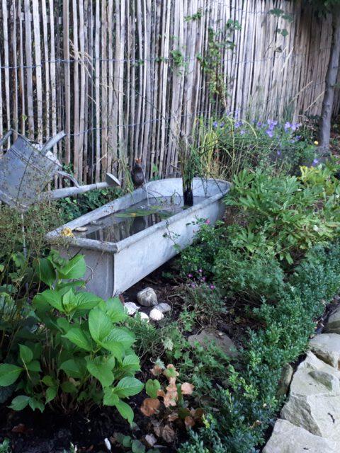 Romantische Wasserspiele in einer alten Zinkbadewanne