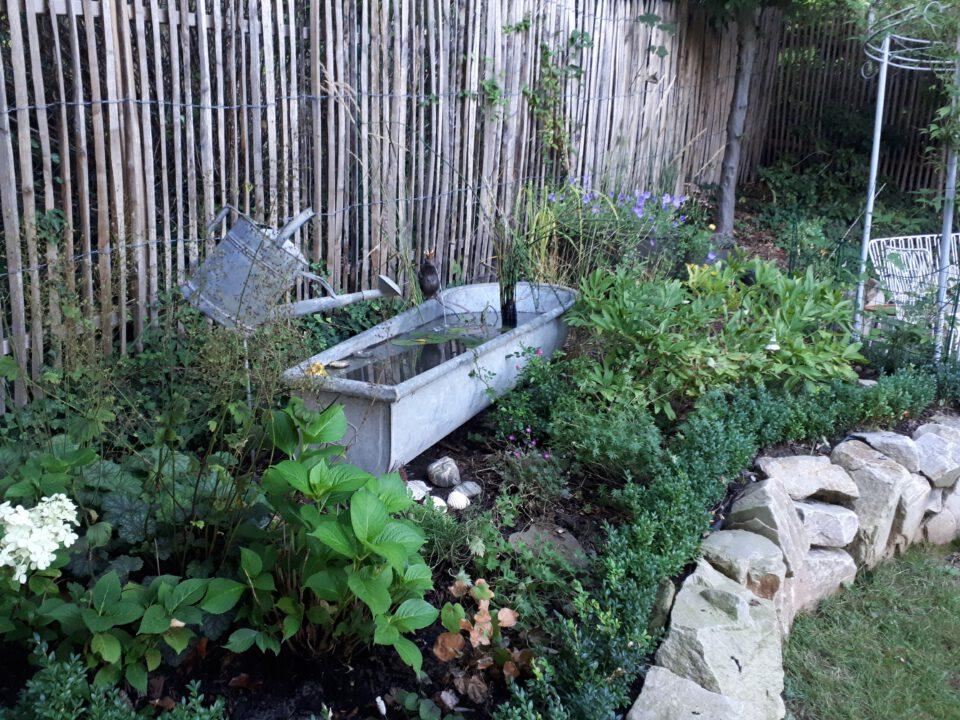 Romantische Wasserspiele im Garten in einer alten Zinkbadewanne mit Zinkgießkanne und wasserspeiendem Froschkönig.