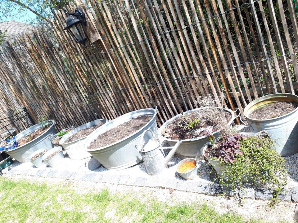 Zinkwannen lassen sich sehr gut bepflanzen, allerdings muss man sie anbohren damit es keine Staunässe gibt.
