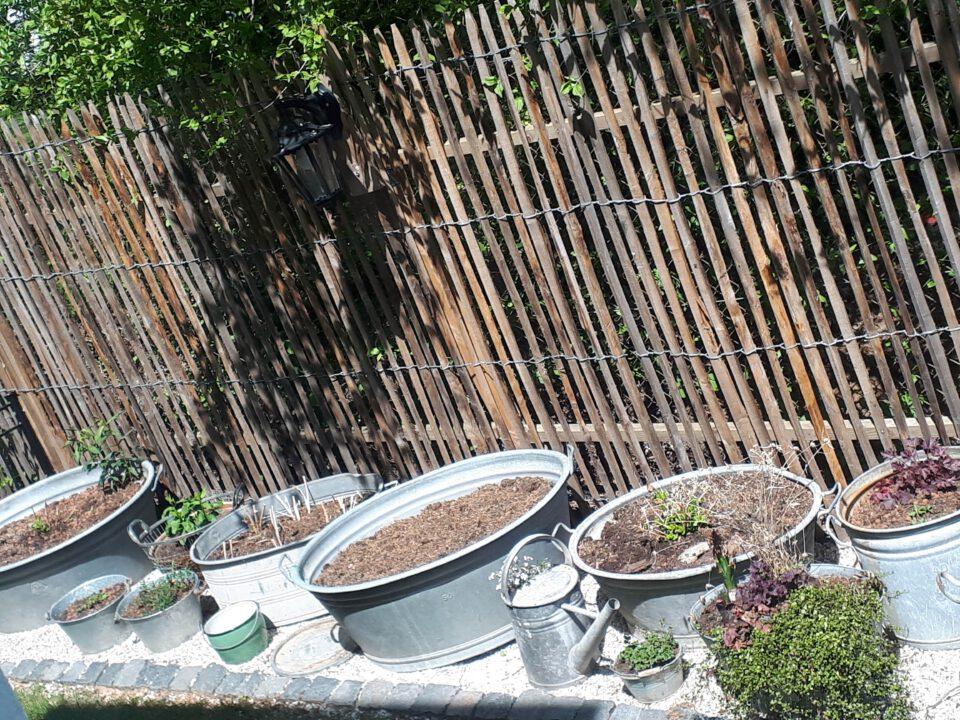 die Zinkwannen für das Staudenbeet rosa sind bereits mit Pflanzsubstrat und Blähton gefüllt.