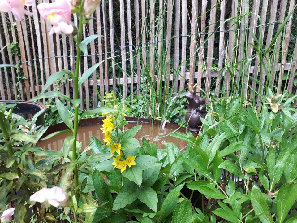 Romantische Wasserspiele im Garten sind ein schönes und beruhigendes Gestaltungselement für einen Romantikgarten.