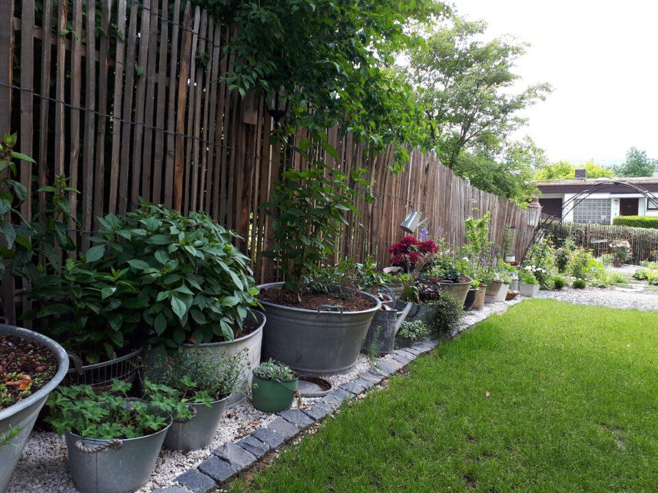 Für die zahlreichen bepflanzten Zinkwannen soll ein Bewässerungssystem installiert werden um das allabendliche Wässern zu erleichtern.