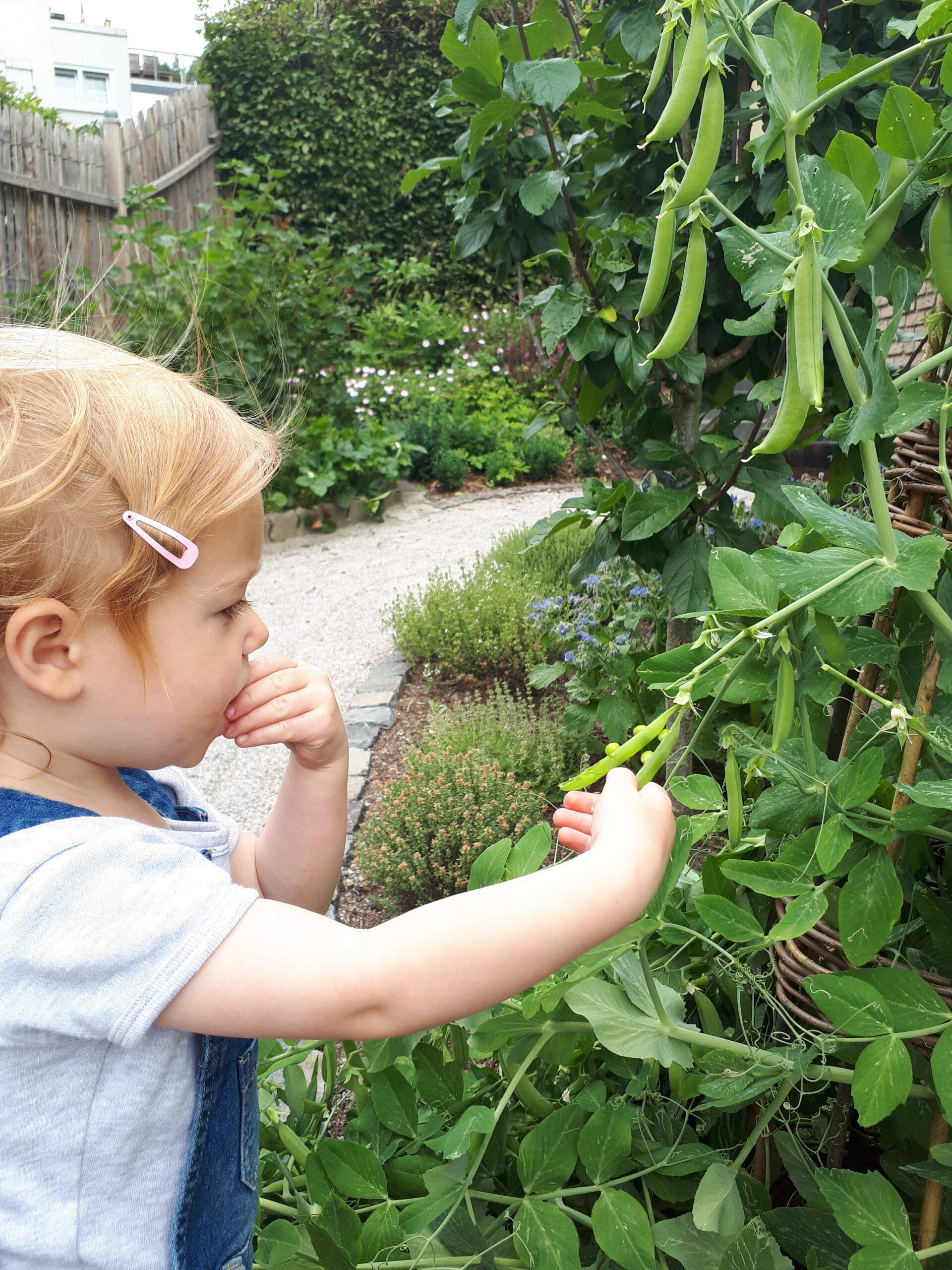 Für Kinder ist so ein Naschgarten wunderbar