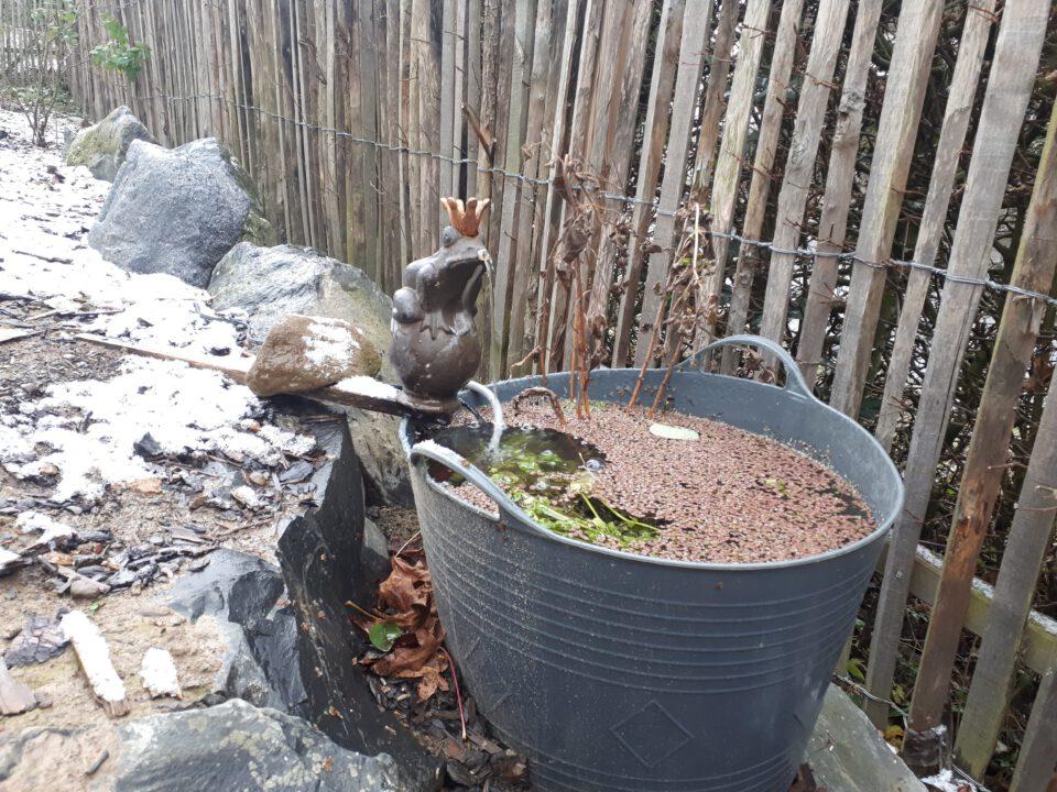 In einer einfachen Kunststofftasche wurden einige Wasserpflanzen mit einem wasserspeienden Froschkönig platziert.